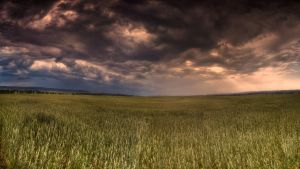 under german skies again II by Ditze