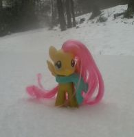 Fluttershy in the Snow by GingerLuna