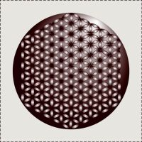 Flower Of Life by Sassy-Sophisticated