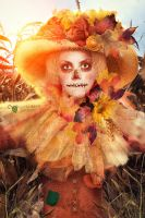 I am a  Scarecrow by Veeutiful