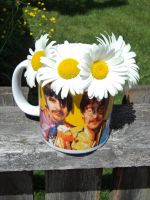 cup of freedom 2 by LilyLondon9