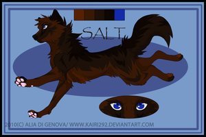 salt chatacter sheet by spagetti-sauce