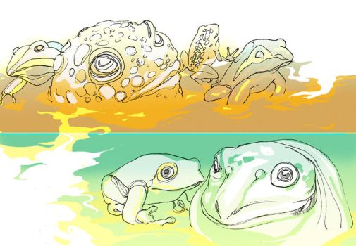 frogs for frug by aeater
