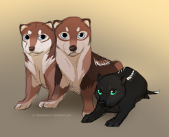 Pups by BlueHeart417