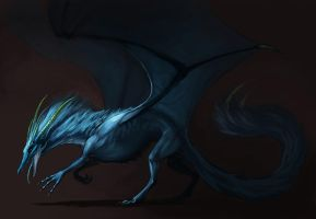Blue dragon - request by grzanka