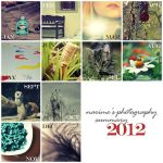 Summary of Photography 2012 by nari-me