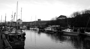 Harbour by greenough
