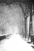 Walk in a Lovely Snowstorm by AnthonyCoke