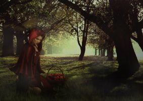 Little Red Riding Hood by toxito