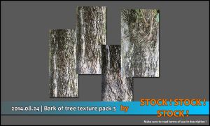 2014.08.24 | Bark of tree texture pack 3 by Stock-Stock-Stock