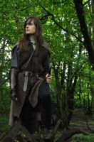 Lady Aragorn 1 by LauraTolton