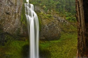 Salt Creek Falls 2 by 11thDimensionPhoto