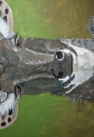 Nilgai, Oil on Canvas, wip by Forrestris