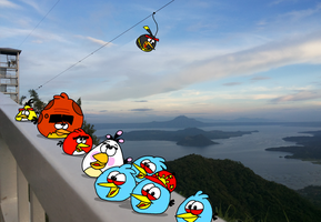 At the Viewing Deck... by AngryBirdsStuff