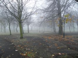 chrchfields park - winter by tzj