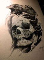 Crow and skull by AndreySkull
