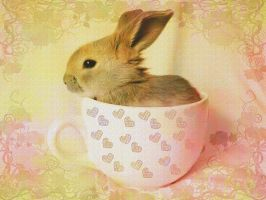 Cup Of Bunny by VisualPoetress