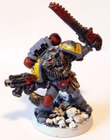 Space Wolves Wolf Guard by Blue-Lupus