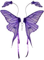 Purple Luna Moth Fairy Wings by customfairywings