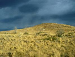 Storm Clouds And Evening Light by serel