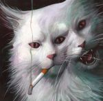 transmet cat detail by charles-hall