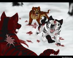 ..:Fight:.. by Meri-theDog