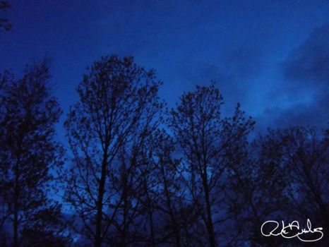 Blue Monday by RJDiogenes