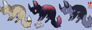 Canine adopts CLOSED - all paid by ColoursAndJerks