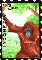 Indonesia Stamp Set - Sumatran Orangutan by Pawlove-Arts