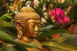 Buddha and Orchids by AgiVega