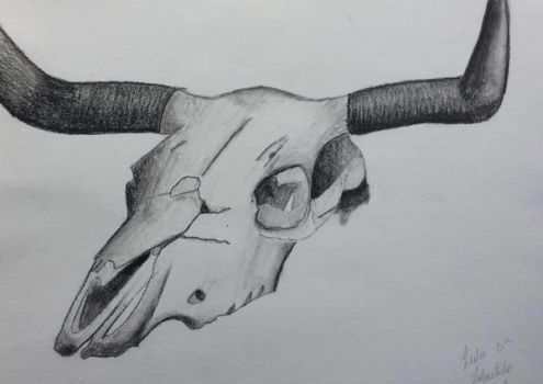Charcoal Skull by CutePetLover