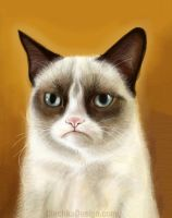 Grumpy Cat Tardar Sauce iPad Finger Painting by Olechka01