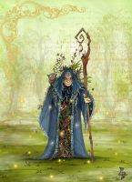 Old forest lady by clv