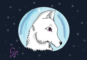 white wolf by icewolf25