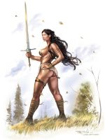 Fantasy Warrior Woman by RayDillon