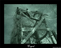 Caged by livingindarkness