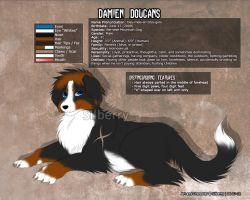 Ref Sheet: Damien Dougans by Silberry