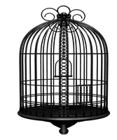 cage by icedemmon