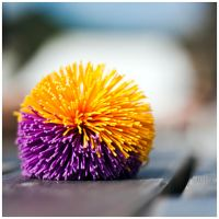 M228 :: Koosh colour by mr-MINTJAM
