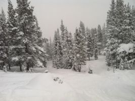Colorado Winter 02 by SWHalo2