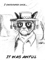 Grumpy Cat goes to Australia by MarcusSmiter