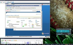 Oracle in Linux VM in Win XP by tch
