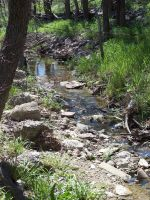 Babbling Brook by Texas-Guard-Chic