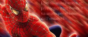 Spiderman Sign by splatterino