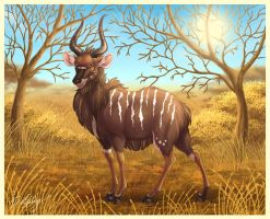 Zack the Nyala by DolphyDolphiana