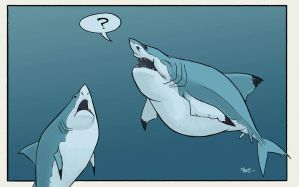 Great Whites?? by sketchshark