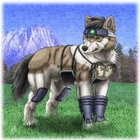 Kendo Armor Wolf Hero by SheltieWolf