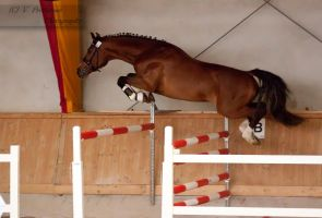 Freejumping Championship 2014_325 by CalyHoney
