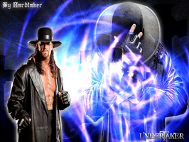 SHOKING COLORS WALL TAKER by HARDTAKER