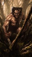 Wolverine Sketch by Atzinaghy